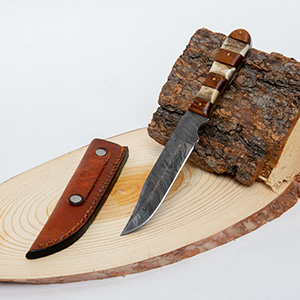 Tulsa Uninque Gifts 7.5 In Mini Damascus Stag Wood Handle Knife